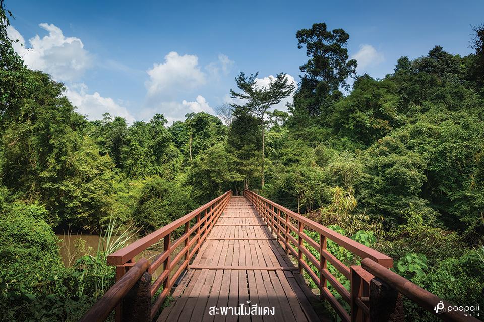 Khao Yai National Park (9)