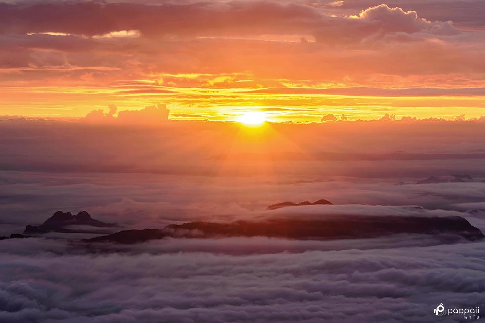 พระอาทิตย์ยามเช้า