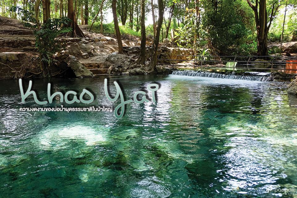 บ่อน้ำผุดธรรมชาติ ความงดงามในป่าใหญ่