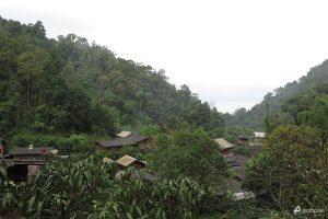 พาไปพักอิง อินสีเขียว ณ หมู่บ้านแม่กำปอง