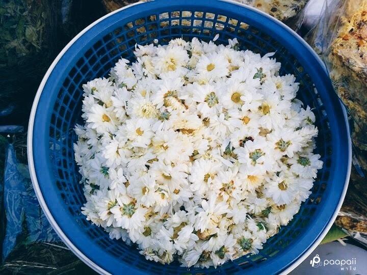 samoeng (1)
