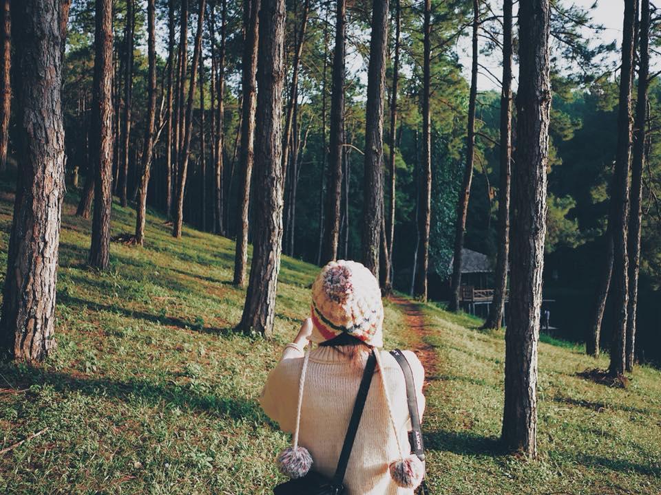 Pangung (11)