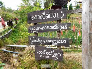 """พาไปเที่ยว """"บ้านอีต่อง"""" หมู่บ้านเล็กๆ ที่มีหมอกตลอดทั้งปี ( 3วัน 2คืน)"""