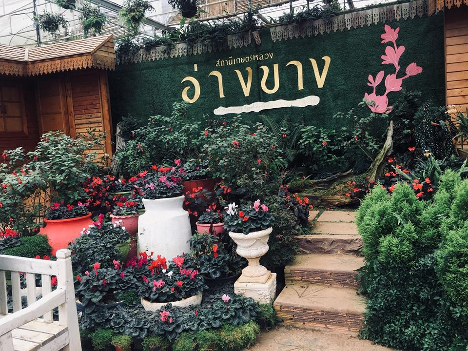reviewchiangmai (14)