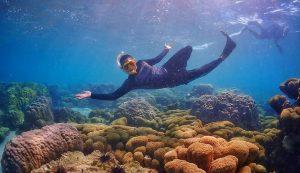 """พาไปดำน้ำที่ """"หมู่บ้านแสมสาร"""" 180 กิโลเมตรจากกรุงเทพ ก็มีที่ดำน้ำสวยๆ"""
