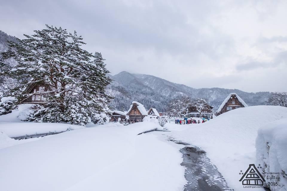 Shirakawa-go (31)