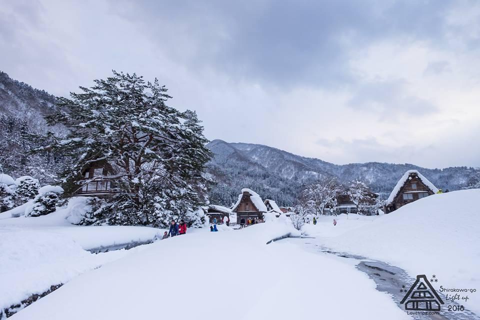 Shirakawa-go (36)