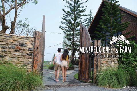 1 วันสบายๆ คาเฟ่กลางนา @ Montreux Cafe' & Farm