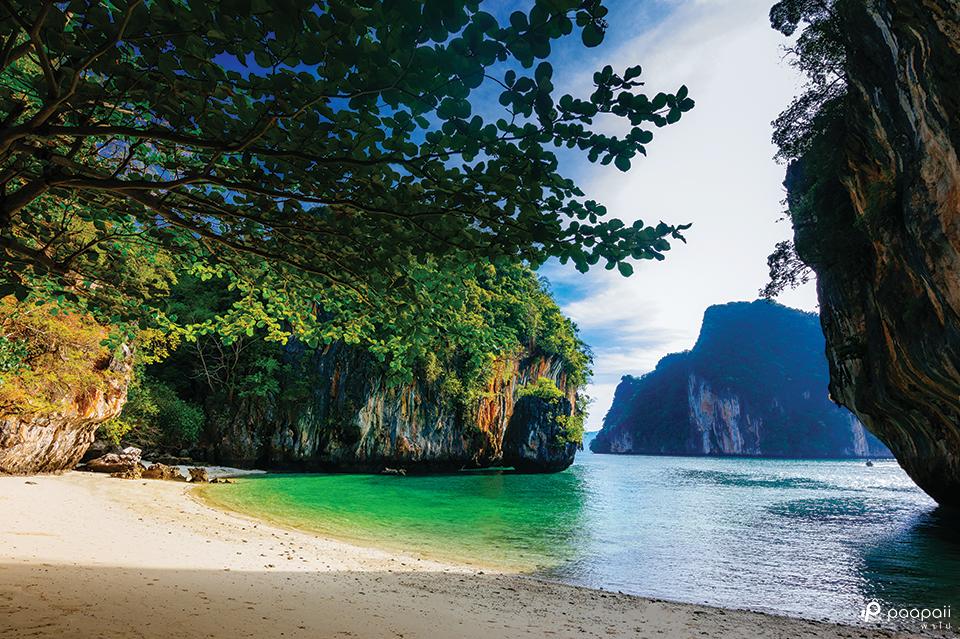 เกาะพาราไดซ์