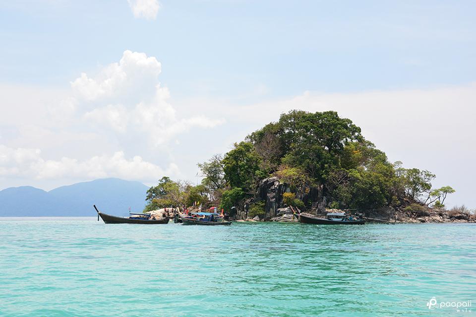 เกาะรอกลอย2