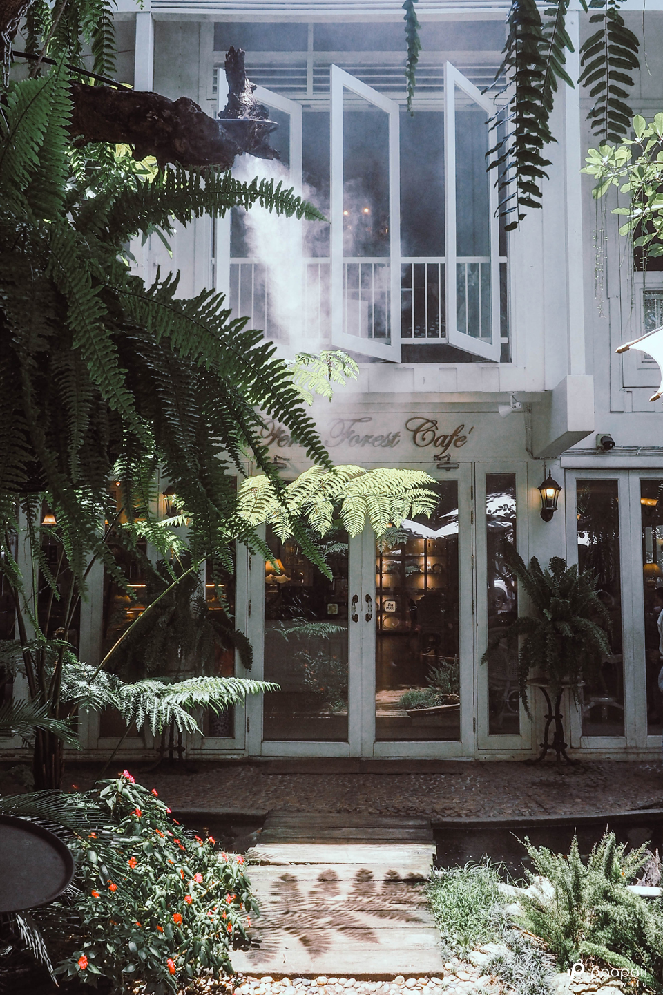 Fern Forest Cafe (2)