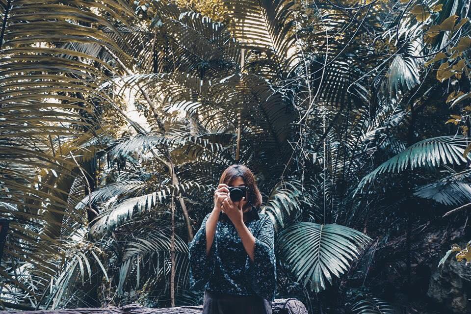 """พาไปเที่ยว """"หุบป่าตาด"""" ชมความงามป่าดึกดำบรรพ์ในตำนาน"""