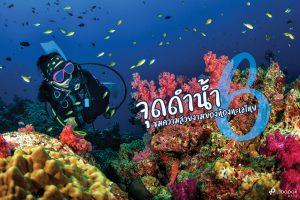 แหล่งดำน้ำ 6 จุด ที่ต้องมาลองสักครั้งในประเทศไทย