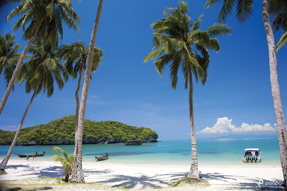 เกาะสมุย1