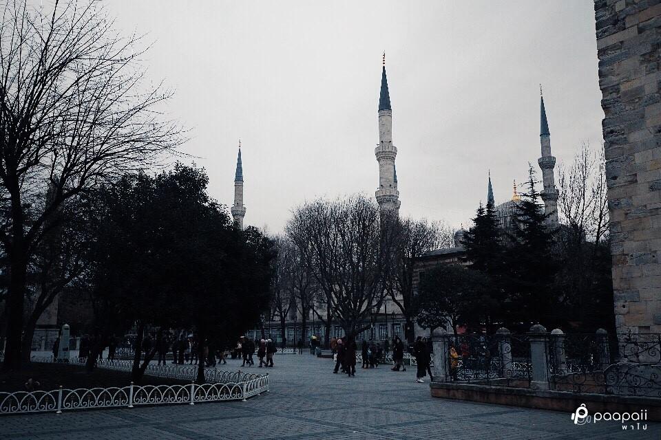 Istanbul (145)