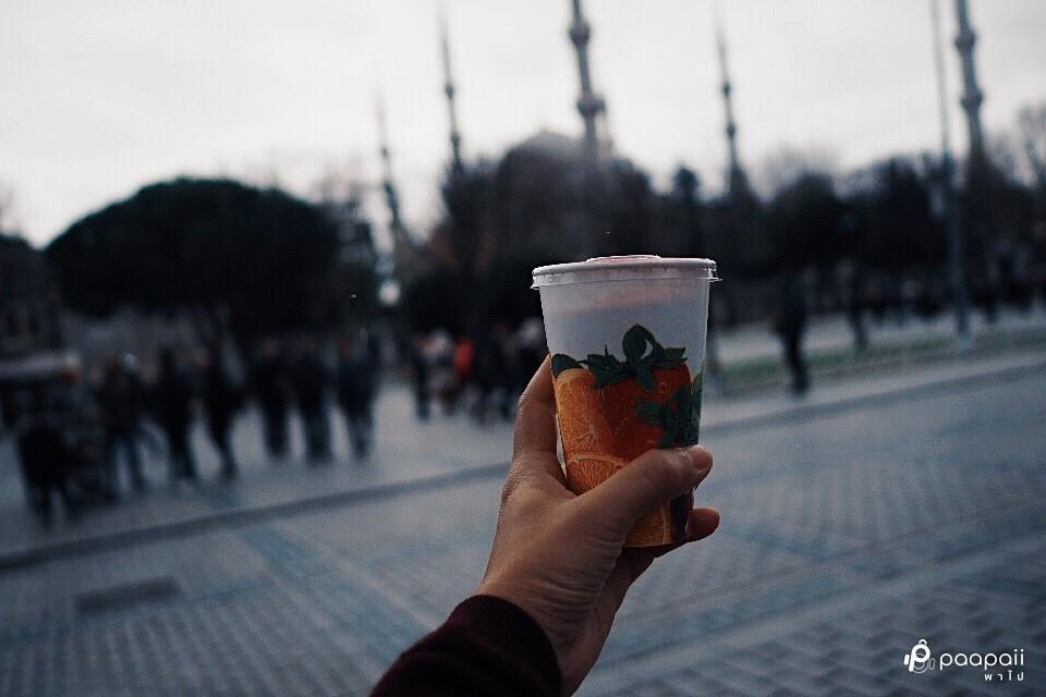 Istanbul (153)