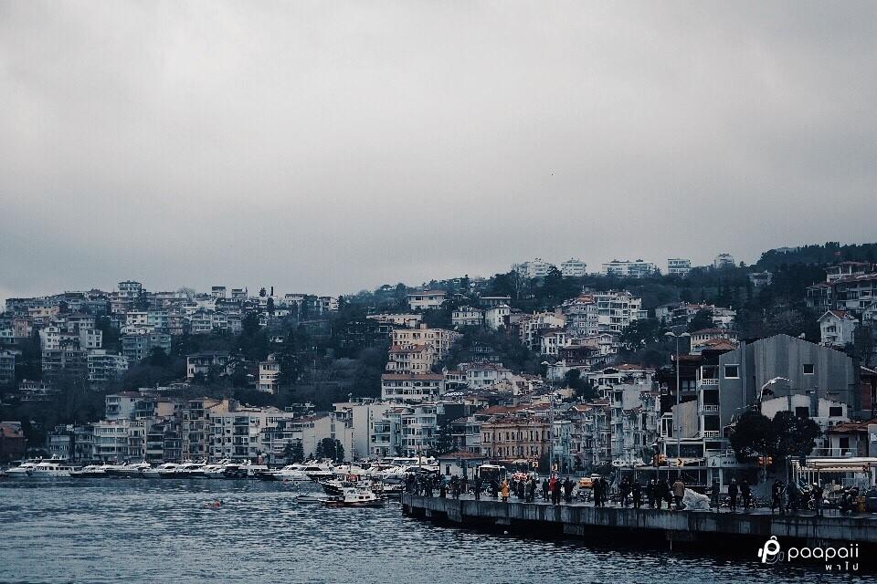 Istanbul (275)