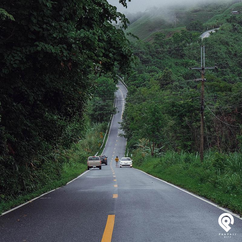 ถนน-1256-14