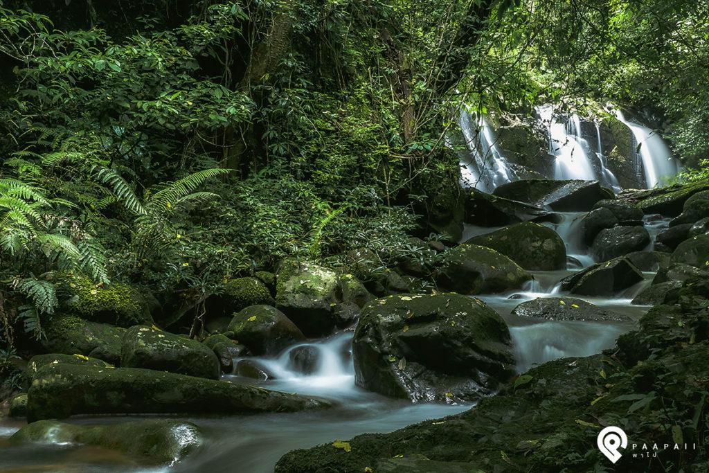 ธรรมชาติที่น่าดูชม ความเงียบสงบที่น่ามาสัมผัส @ สะปัน จ.น่าน