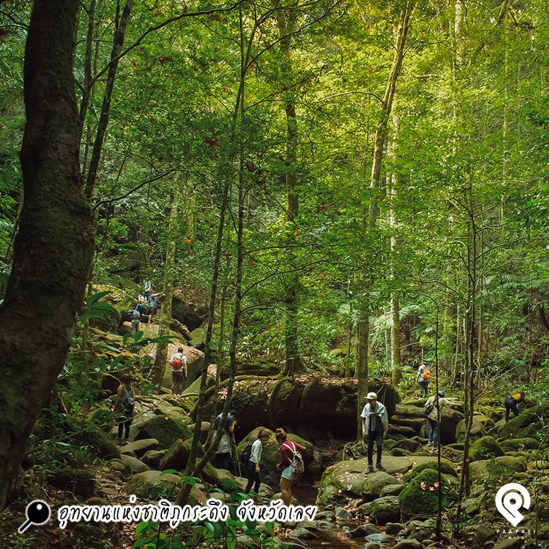 """เที่ยว """"อุทยานแห่งชาติ"""" ไปพบความสุข ที่ธรรมชาติมอบให้"""