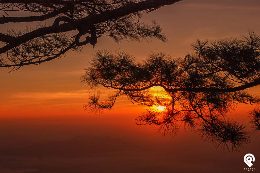 """ตะวันลับฟ้า ความสวยงามในยามเย็น ณ """"ผาหล่มสัก"""" ภูกระดึง จ.เลย"""