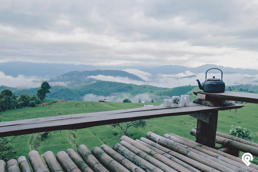 """หยุดเวลาไปกับธรรมชาติ และความเงียบสงบไว้ที่ """"ป่าบงเปียง"""""""