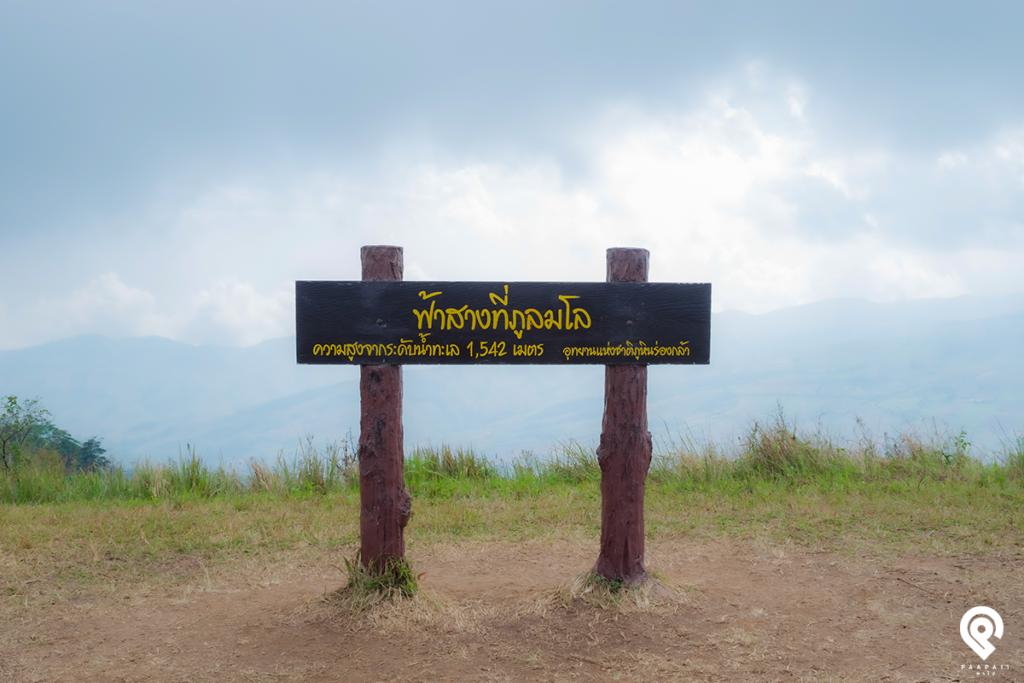 """ซากุระเมืองไทย เบิกบานทั่วหุบเขา ณ """"ภูลมโล"""""""