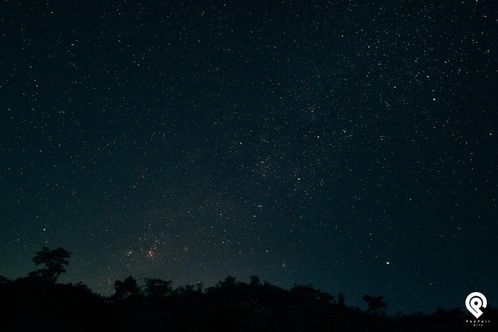 พาไปดูดาว เฝ้ากระทิง 3 วัน 2 คืน @ วังน้ำเขียว